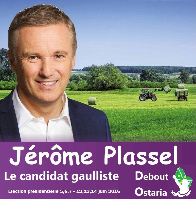 Jérôme Plassel - Election présidentielle juin 2016 Affich10