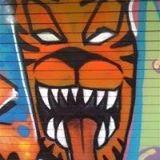 Cox Facebook page Tiger10
