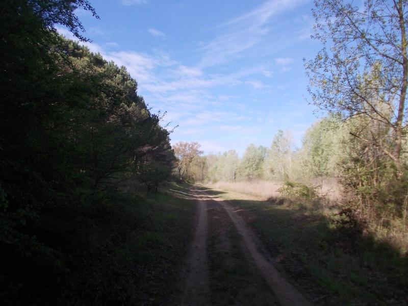 Escursione scalza alla riserva naturale Valle Vecchia Dscn6013