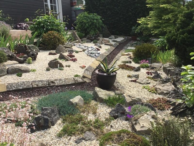 Histoire d'une rocaille Image309