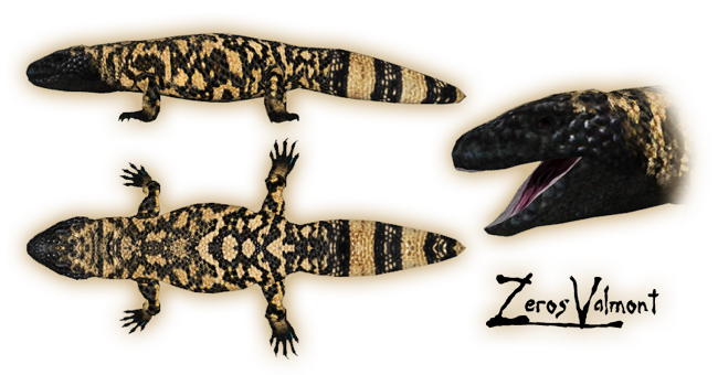 Topics tagged under lizard on User - Made Creations Gilamo10
