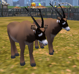Topics tagged under bushbuck on User - Made Creations Roan_a10