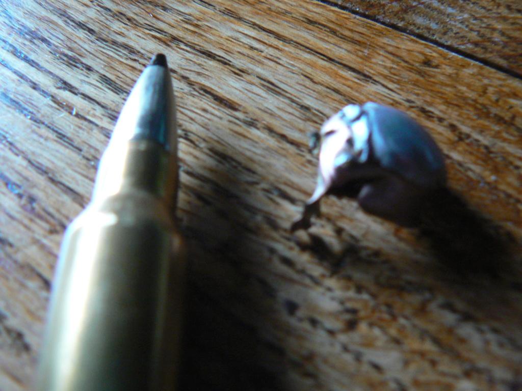 7rm et balles speed tip P1090516