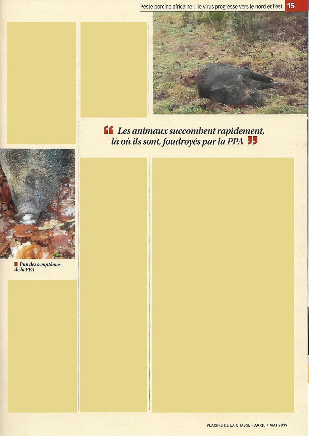 Peste porcine : On est en plein dedans !!! (Partie 2) - Page 39 Plaisi10