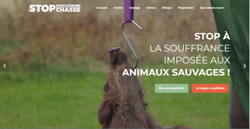 Avenir de la chasse en Belgique : Image bien terne ! Stop10
