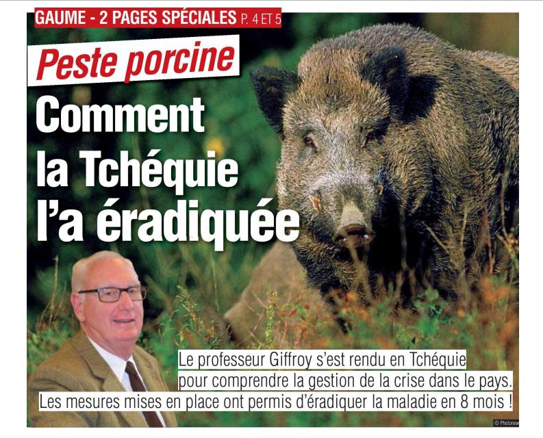 Peste porcine : On est en plein dedans !!! (Partie 2) - Page 38 Tchzoq10