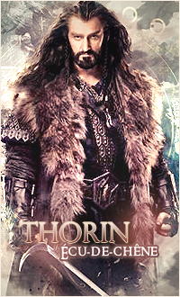 L'antre du Gribouillage !  Thorin10