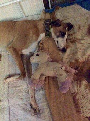 Pepa poupée dont le corps est marqué, mais aux jolis yeux maquillés. Scooby France/Adoptée Pepa1310