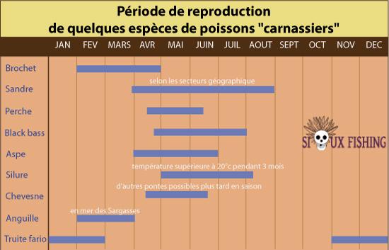 Nouvelle reglementation pour le carnassier en 2éme catégorie Calend10