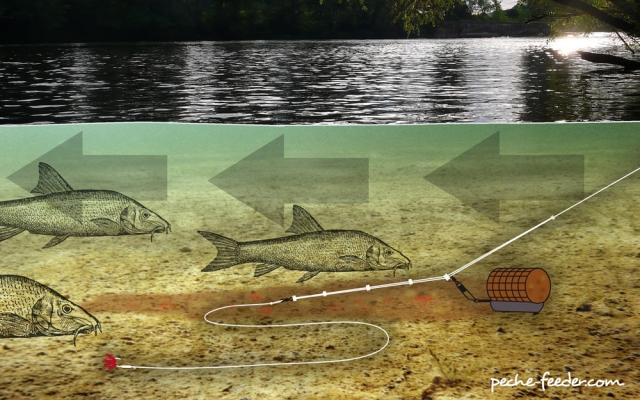 Pêche en rivière  Montag11