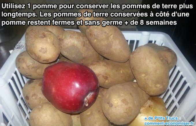 Conserver les pommes de terre plus longtemps Conser10