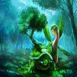Forêt Yon