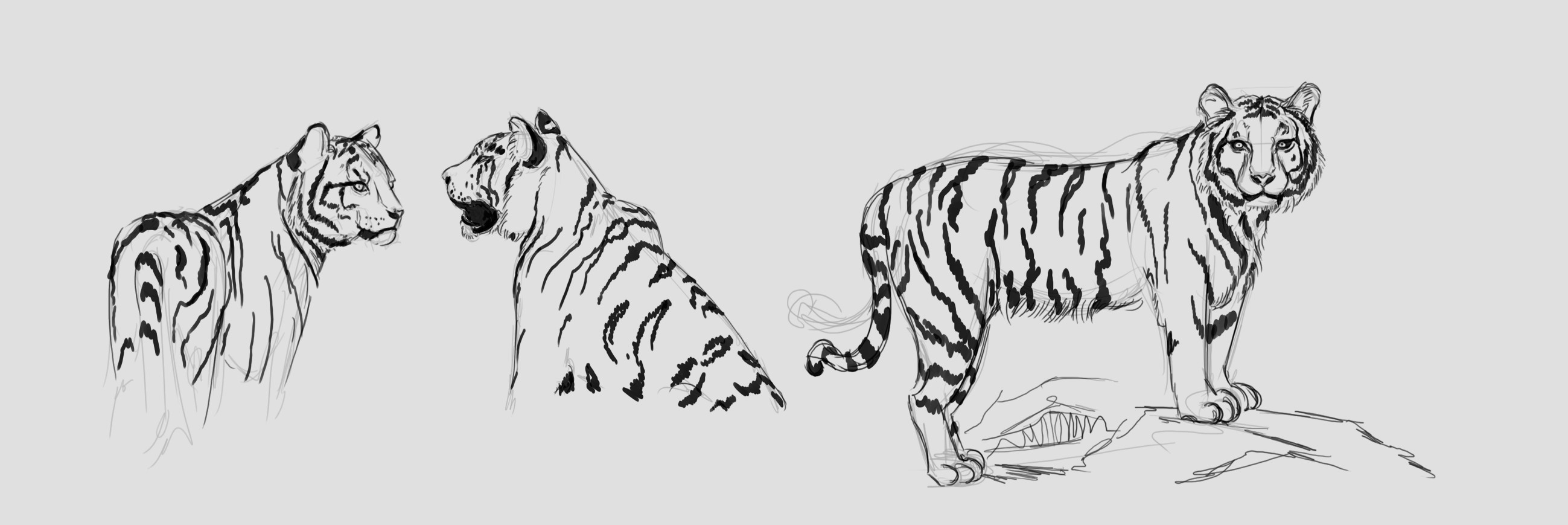 Les gribouilles d'Atna: objectif landscape et persos - Page 21 Tigre-11