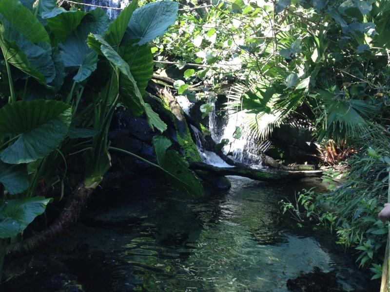Road Trip Floridien : Le rêve de 2 soeurs - Du 4 au 21 Octobre 2015 (MAJ : 21/05/2017) - TR Terminé - Page 23 Img_3314