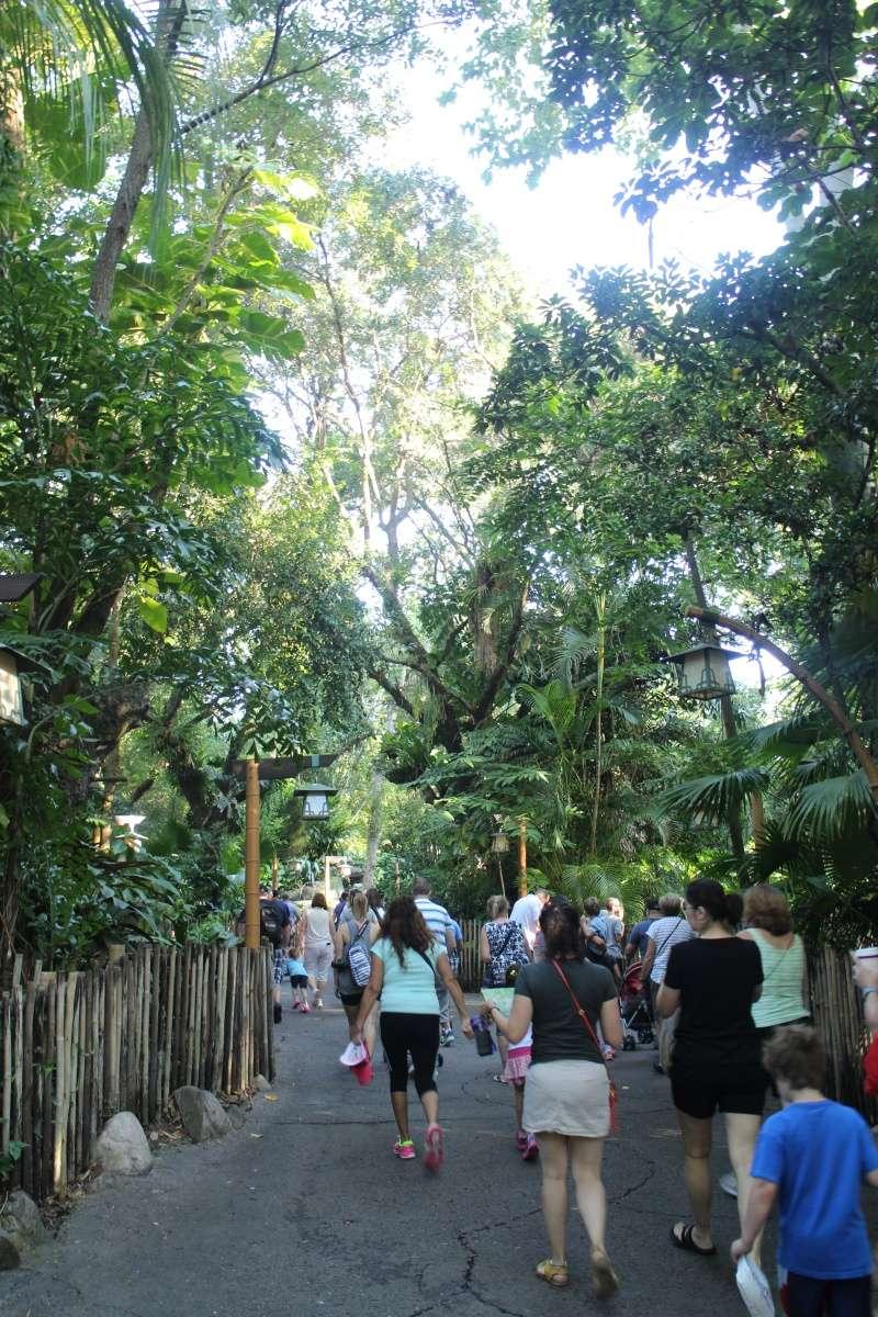 Road Trip Floridien : Le rêve de 2 soeurs - Du 4 au 21 Octobre 2015 (MAJ : 21/05/2017) - TR Terminé - Page 23 Img_4527
