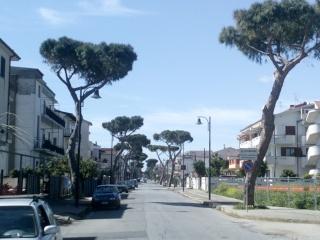 Copertine: il politico italiano e la natura (o l'arte).  3_amen10