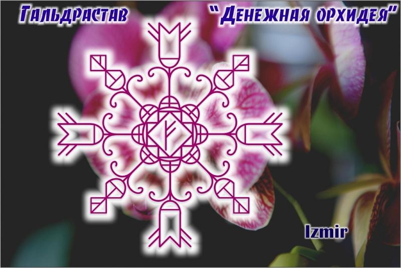 Гальдрастав «Денежная Орхидея»  Ezeze_10