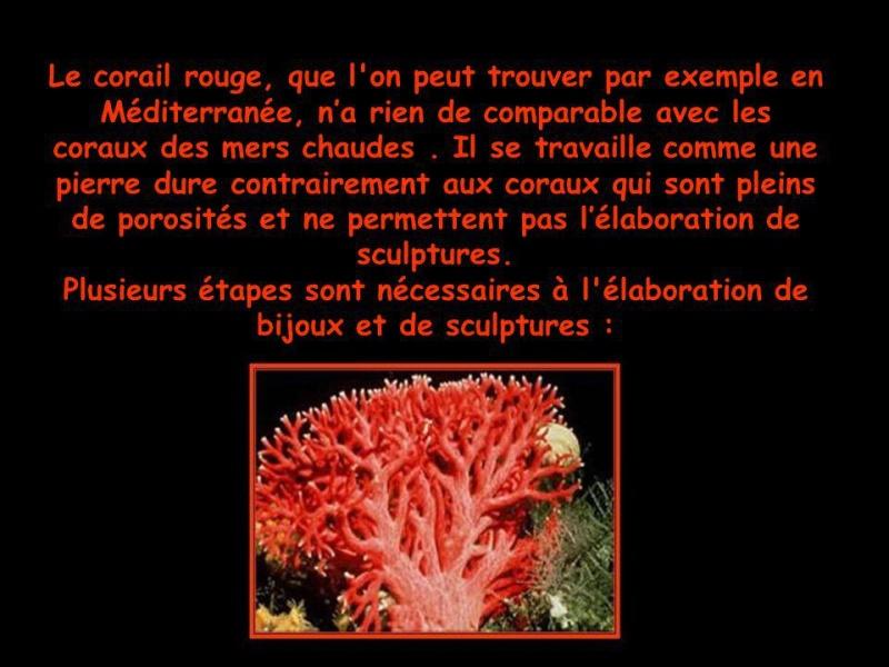 [Jeu] Association d'images - Page 20 Image48