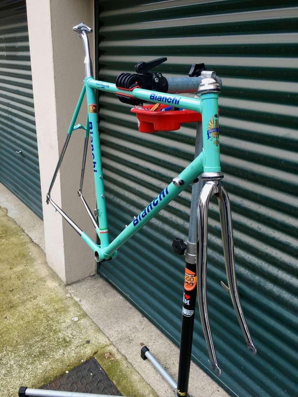 Bianchi Reparto Corse 00210
