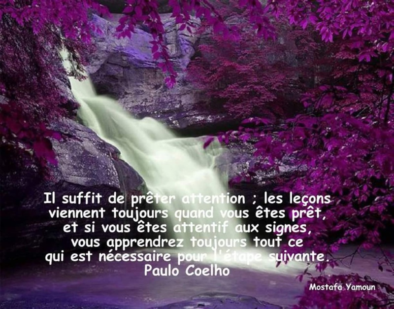 Citations que nous aimons - Page 7 Fb_img14