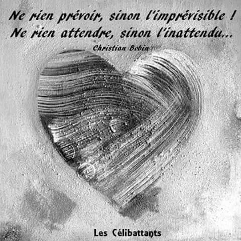 Citations que nous aimons - Page 7 Fb_img15