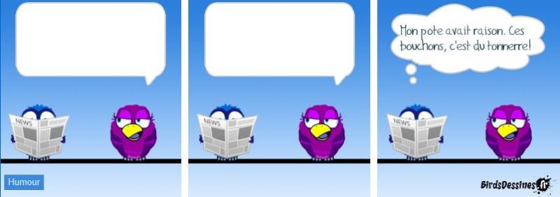 Les Birds Dessinés - Page 3 00000012