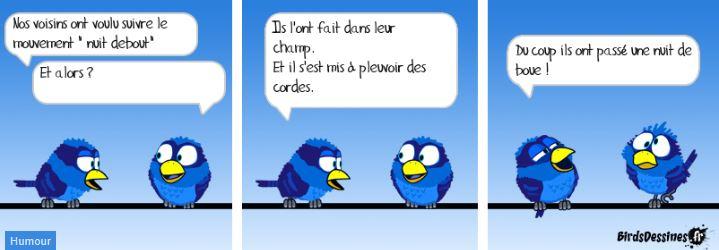 Les Birds Dessinés - Page 3 01ecap10