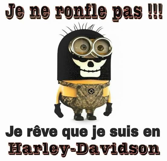 Humour en image du Forum Passion-Harley  ... Fb_img10