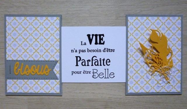 Top Card - La recette élaborée - Page 26 P1070730