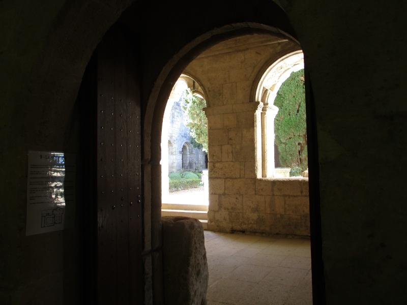 balades en Provence - Page 4 Img_2311