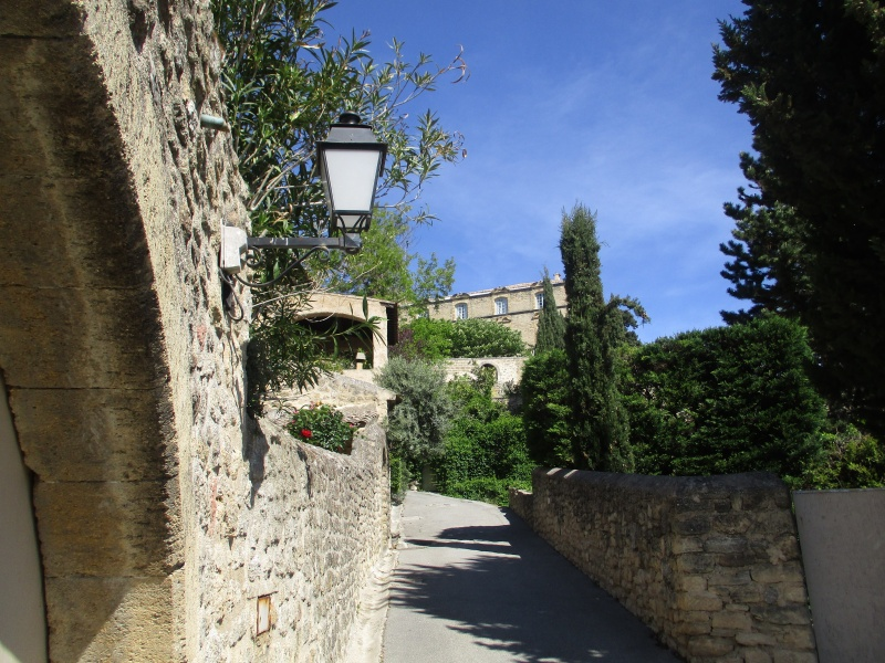 Aux portes du Luberon - Page 2 Img_2422