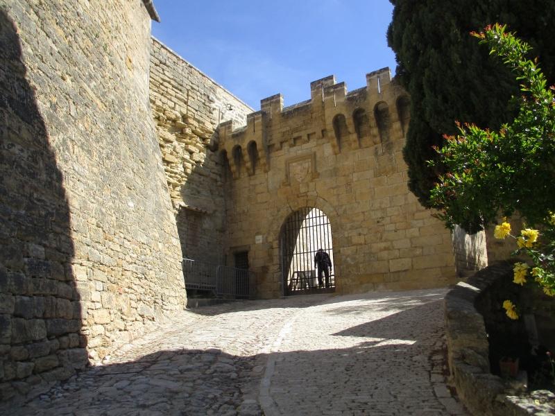 Aux portes du Luberon - Page 2 Img_2424