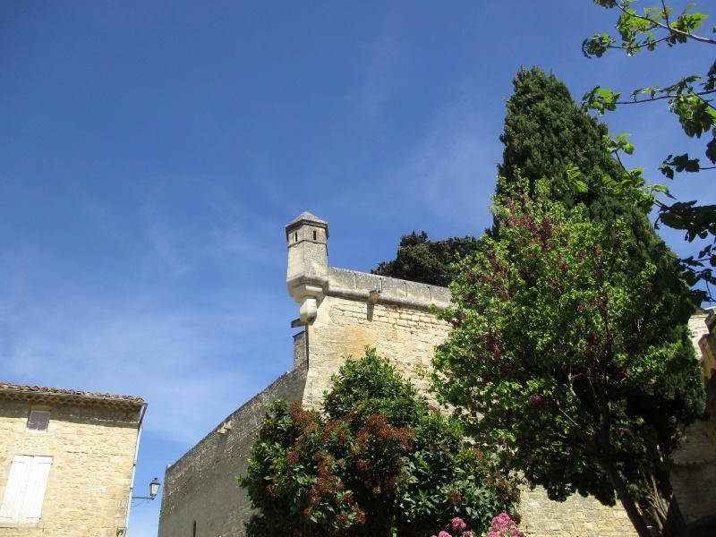 Aux portes du Luberon - Page 2 Img_2427