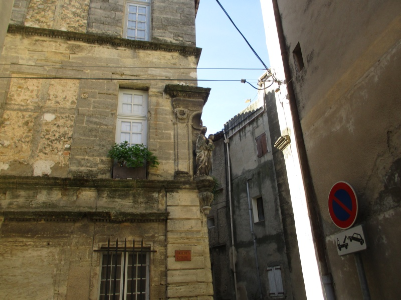 Aux portes du Luberon - Page 3 Img_2443