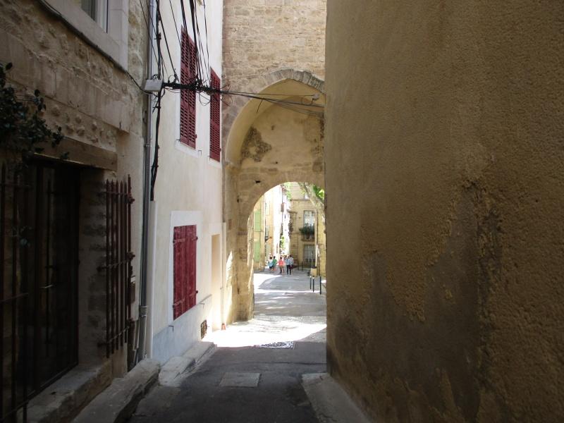 Aux portes du Luberon - Page 3 Img_2516