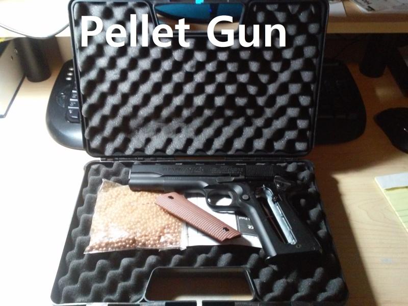 1911 Winchester Pellet Gun 02281610