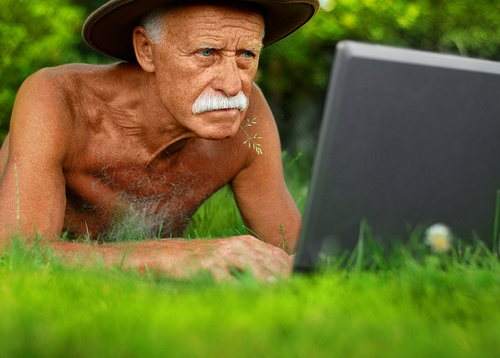 Wolf checks his inbox  Image62
