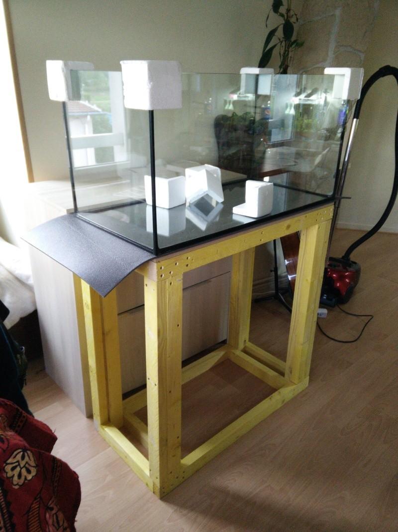 Aquascaping 90x45x45 Img_2015