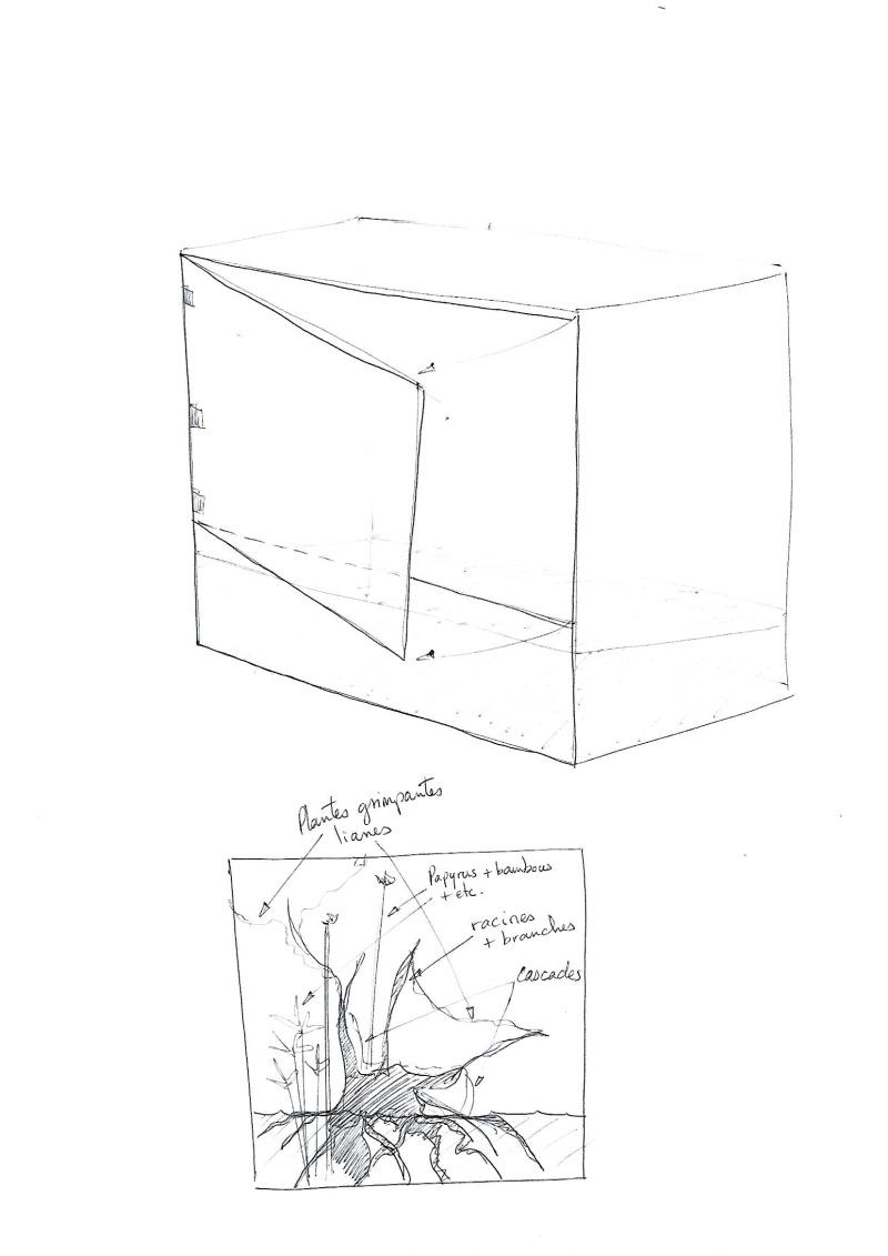 [Projet] Aqua-terrarium Scan0011