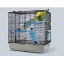 Recherche Cage pour deux rats (35) Unknow11