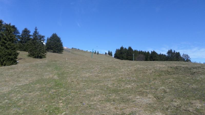 Réaménagement secteur Observatoire - Le Revard (Savoie Grand Revard)  02710