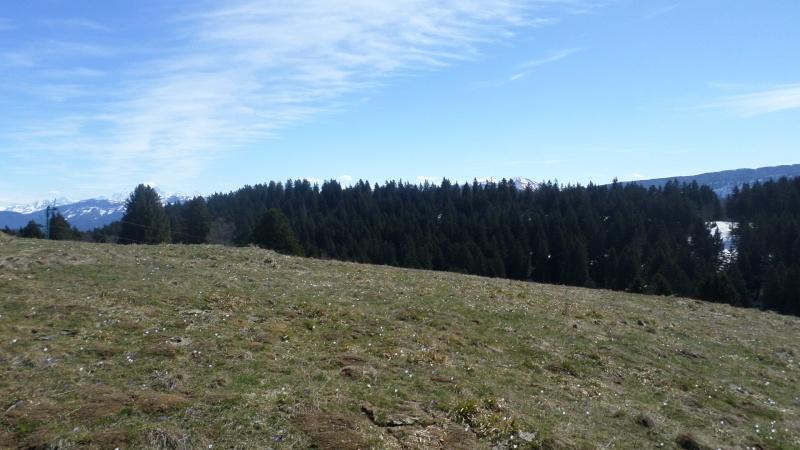 Réaménagement secteur Observatoire - Le Revard (Savoie Grand Revard)  02810