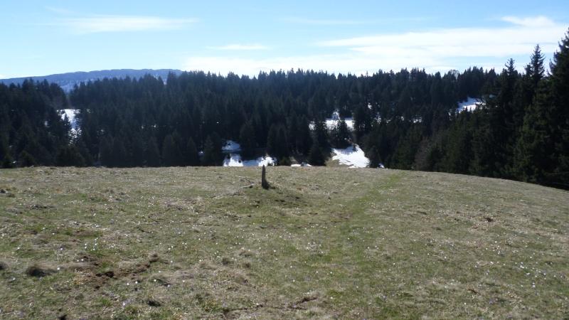 Réaménagement secteur Observatoire - Le Revard (Savoie Grand Revard)  02910