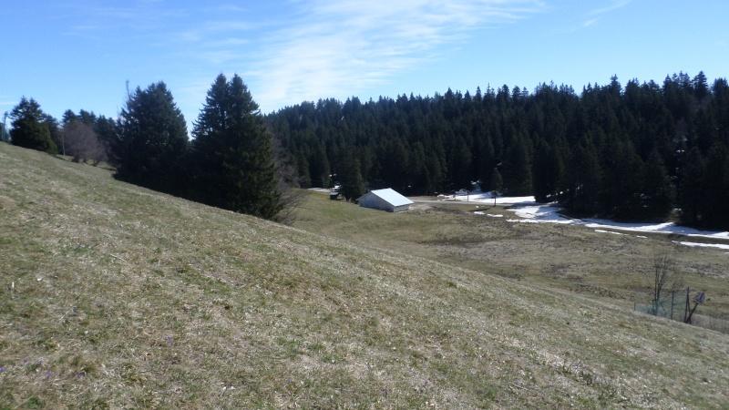 Réaménagement secteur Observatoire - Le Revard (Savoie Grand Revard)  03010