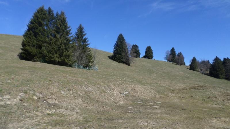 Réaménagement secteur Observatoire - Le Revard (Savoie Grand Revard)  03210