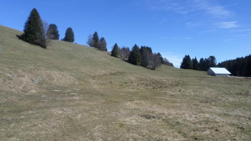 Réaménagement secteur Observatoire - Le Revard (Savoie Grand Revard)  03510