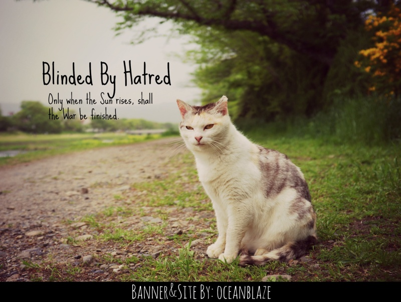 Blinded by Hatred