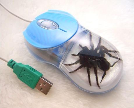 La betise incarnee Spider11