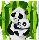 photoooooo panda Captur16