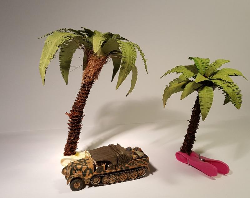 Palmen für die Wüste 20160617